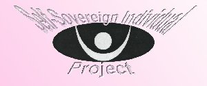 Go to Self-Sovereign Individual Project Entry Page